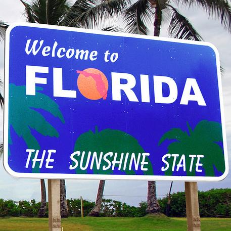 Hin- und Rückflüge von Düsseldorf nach Miami oder Tampa, Florida  ab 302€ [September - April, auch über Weihnachten]
