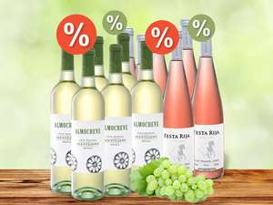 6er-Kartonaktion auf Wein