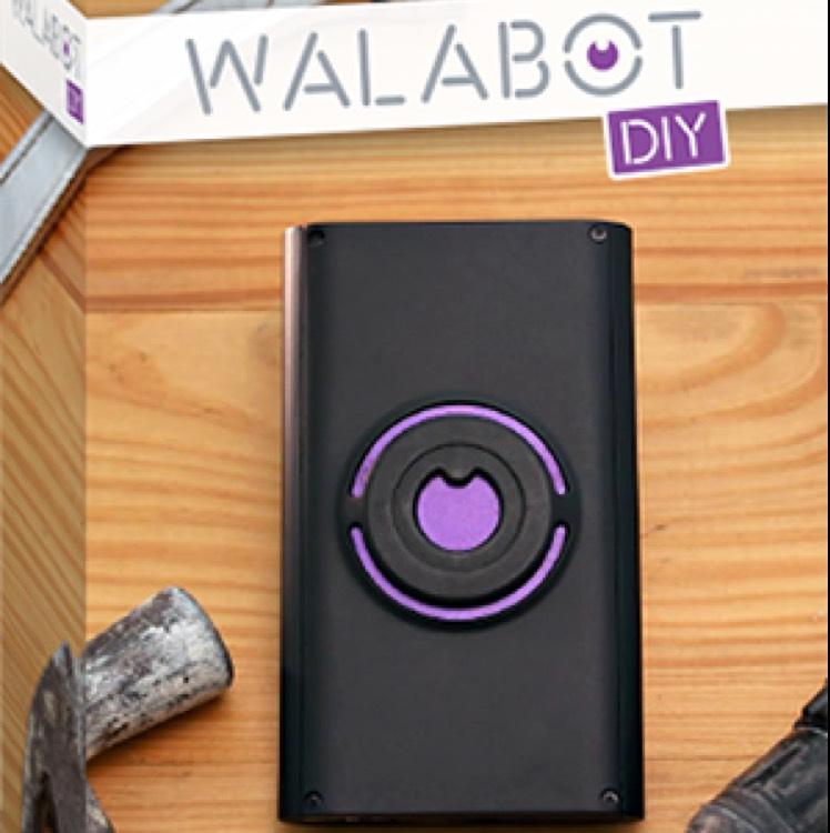Walabot DIY - Durch Wände schauen