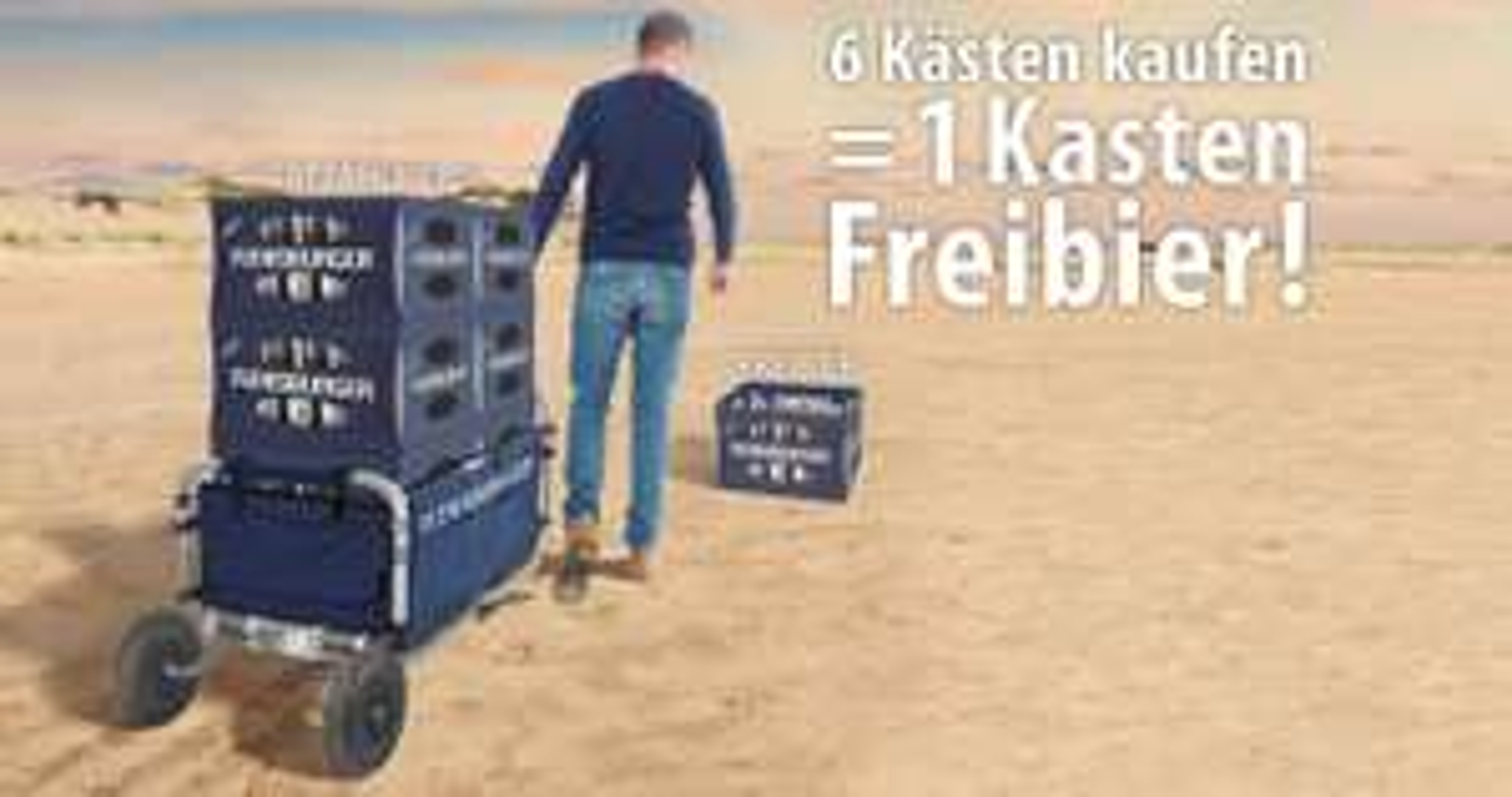 6 Kästen Flensburger Kaufen = Kasten Freibier