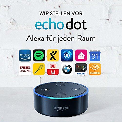 Amazon Echo Dot 2nd Gen (schwarz / weiß)