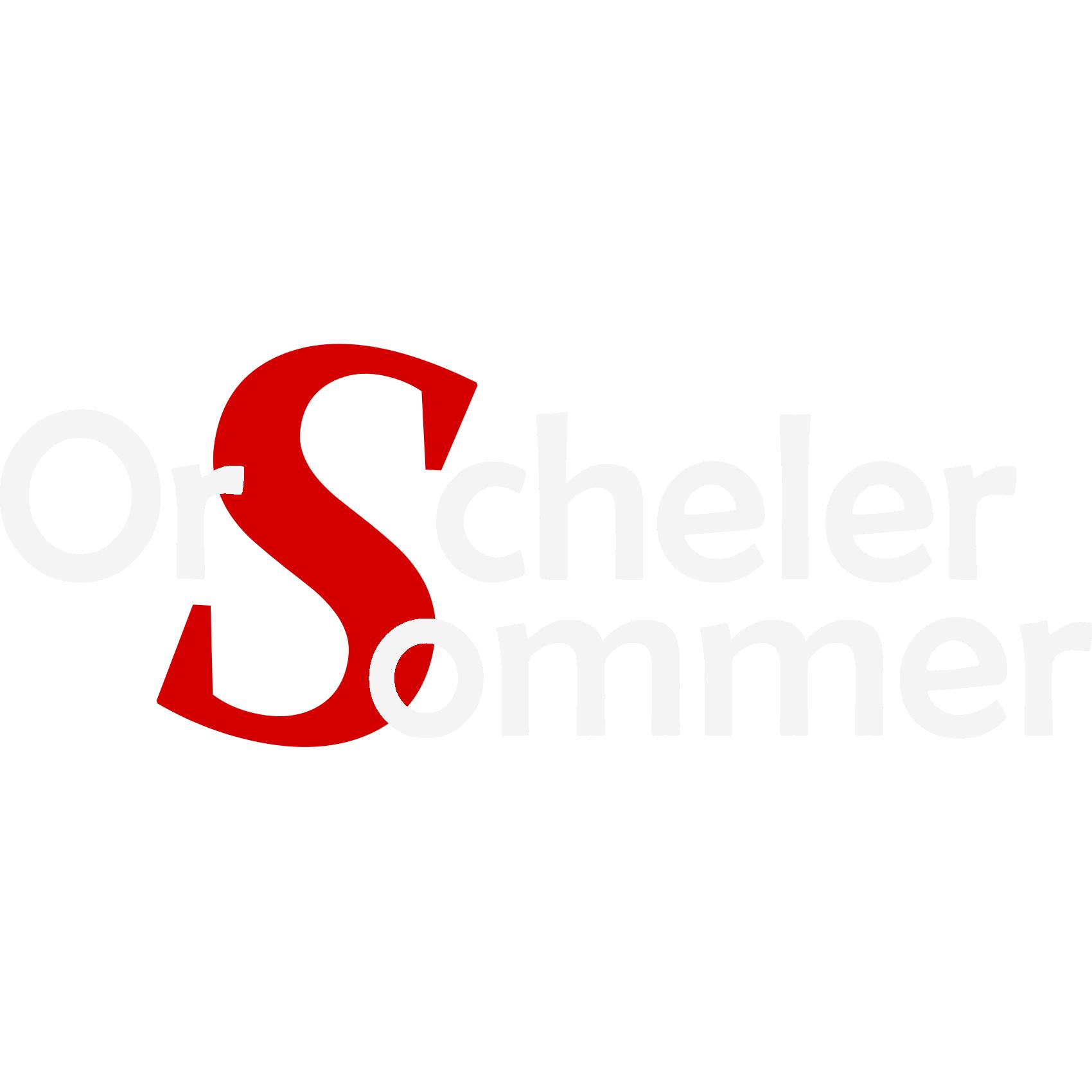 [Lokal] Orscheler Sommer 2017 Konzerte und Open-Air-Kino und vieles mehr