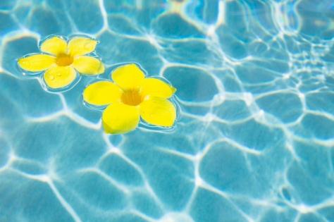 Reisespecial Urlaub.de: 146 Euro zurück (80€ Cashback Shoop ab 800€ MBW + 66€ Gutschein ab 1000€ MBW!)