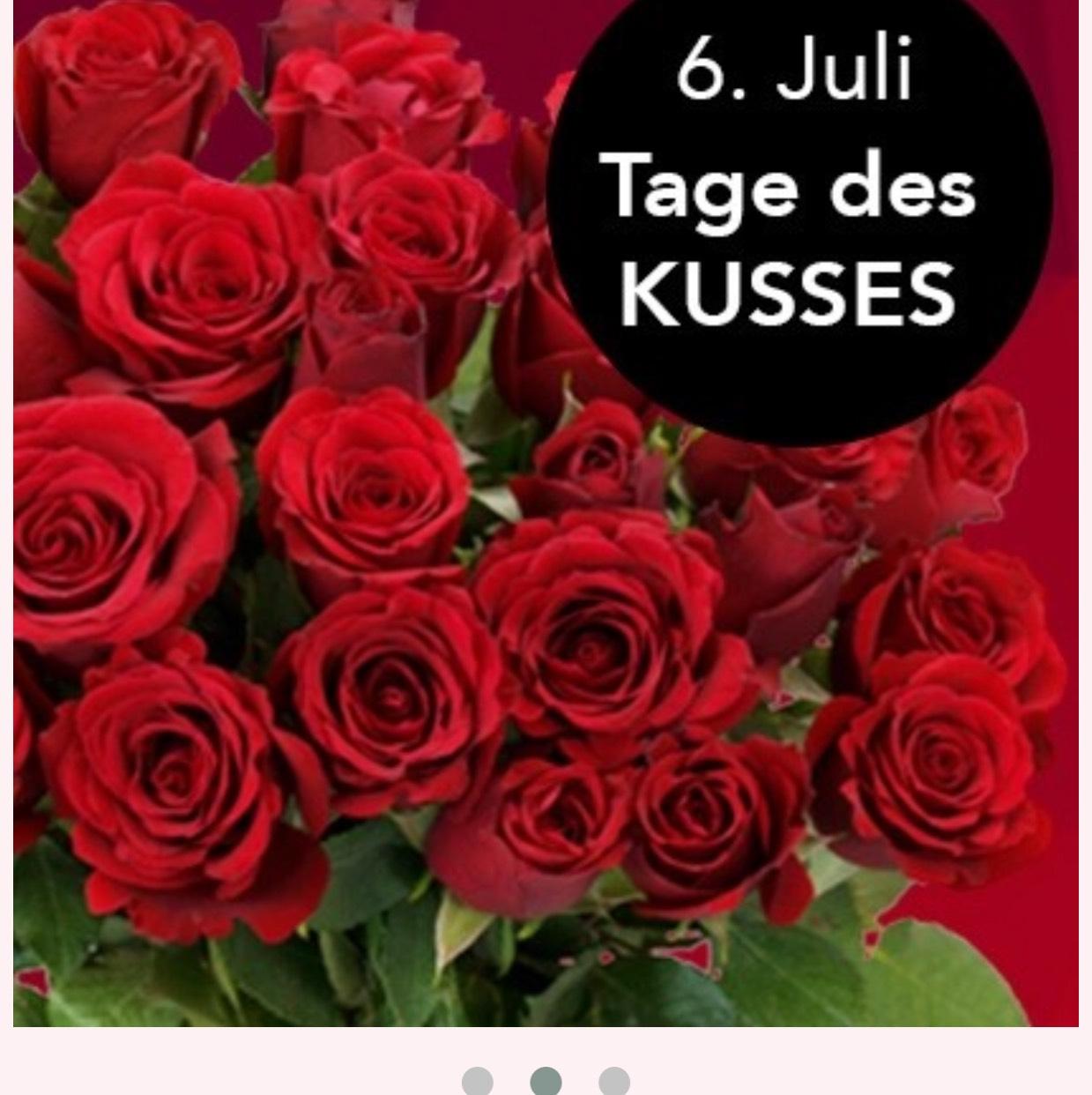 Rosen – 37 Stück für nur 19,99 zzgl VK