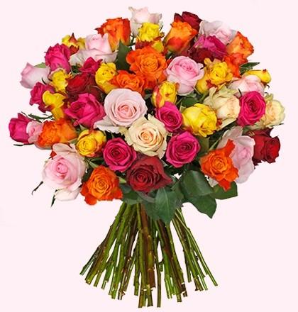 38 Rosen bei Blume Ideal - 0,63€ je Rose