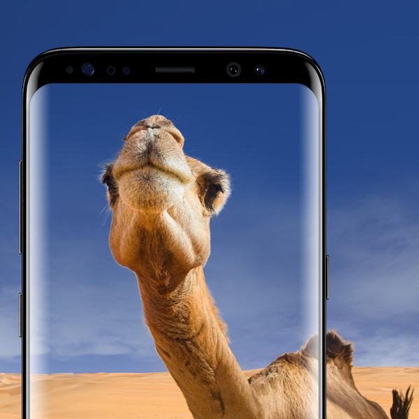 Vodafone Young M mit 3 GB LTE (500 Mbit/s) für eff. 27,49 € / Monat + Samsung Galaxy S8 € für 99 € *UPDATE*