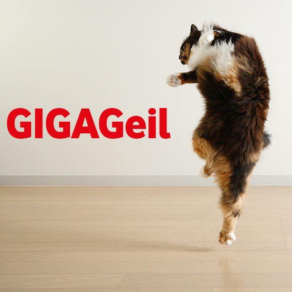 Vodafone GigaKombi RED M (14 GB LTE für 36,99 € / Monat + Apple iPhone 7 oder Samsung Galaxy S8 für 1 €) jetzt mit GigaWechselbonus (bis zu 6 Monate Grundgebührbefreiung) [Vodafone DSL- oder Kabel-Bestandskunden]