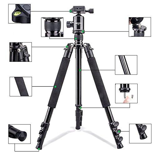 Tragbares Kamera Stativ Leichtgewicht, 61,8 Zoll Aluminiumlegierung Reise Stativ Kit mit Tasche: 4 Teile, 360° AMAZON