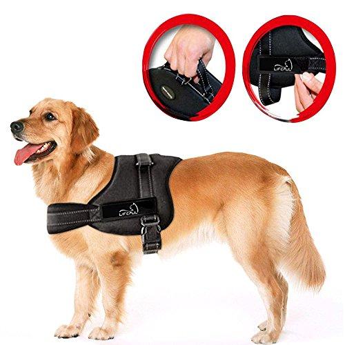 Brustgeschirr für Hunde für 23-30kg (amazon prime)