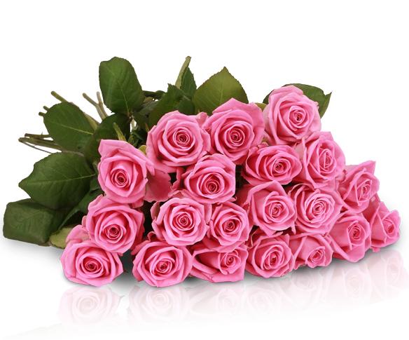 Lovely Pink Rosenarrangement mit 20 rosa Rosen in 50cm für 18,90€@Miflora