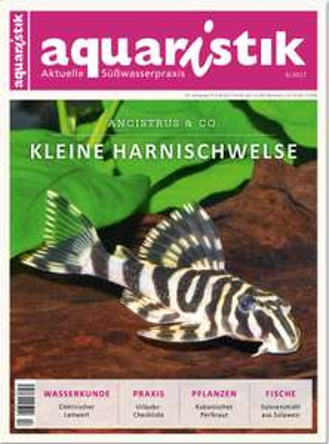 Kostenloses Probeheft  aquaristik   Dähne Verlag