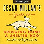 """[audible] 2 Hörbücher für Hundebesitzer in englisch von Cesar Millan (""""The Dog Whisperer"""") gratis (und dabei noch Gutes tun)"""