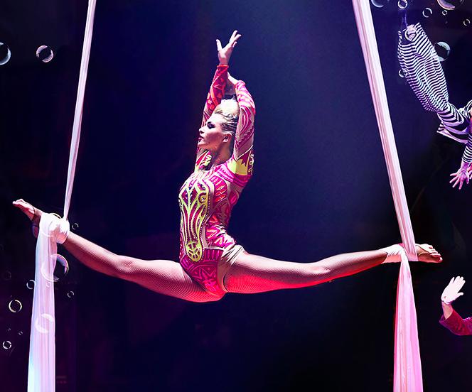 Tickets für den Circus Roncalli ab 14,90€ in Düsseldorf, Hannover, München oder Bremen bei [vente-privee]