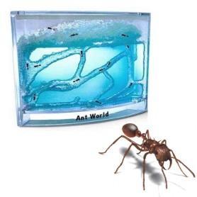 Ameisenfarm, Ant World @MegaGadgets (10,80 € inkl. qipu)