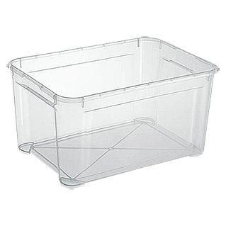 Regalux Clear Aufbewahrungs Boxen ab 95 Cent