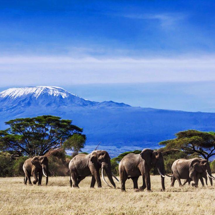 Flüge: Kenia [November - April] - Mit Lufthansa oder Swiss von Amsterdam nach Nairobi ab nur 361€ inkl. Gepäck