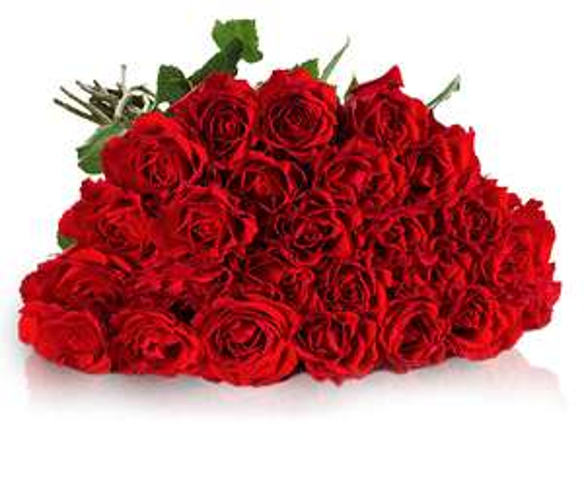 30 rote Rosen mit 50cm Stiellänge für 19,90€ inkl. Versand (=66 Cent / Rose) + 10% (1,40€) Shoop Cashback (=62 Cent / Rose) [Miflora]