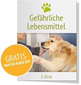 Gefährliche Lebensmittel für den Hund - kostenlose Broschüre