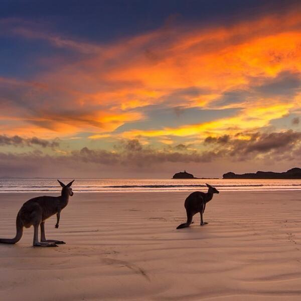 Flüge: Australien [November - März] - viele Termine über Weihnachten und Silvester - Hin-und Rückflug von Deutschland nach Melbourne oder Sydney ab nur 583€ inkl. Gepäck
