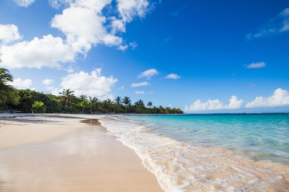Flüge: Puerto Rico [Mai - Juni] - Hin- und Rückflug von Deutschland ab  352