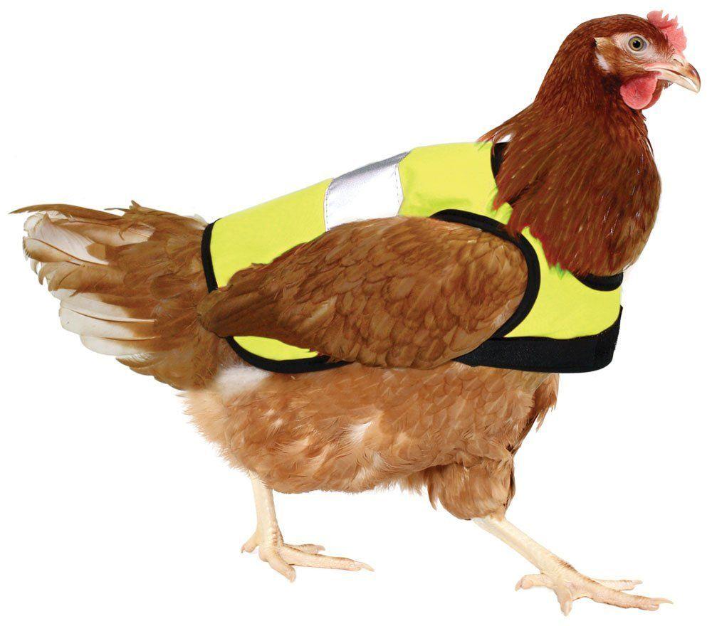 Warnwesten für Hühner für 34,99 €