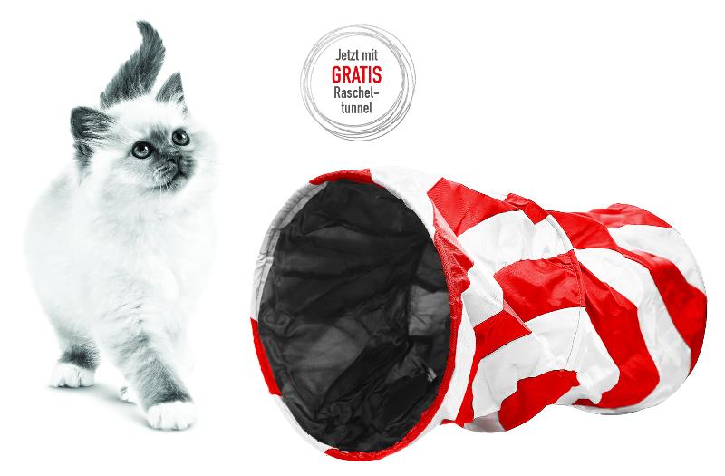 Gratis Rascheltunnel beim Kauf von mind. 2 Packungen Royal Canin Feline Health Nutrition