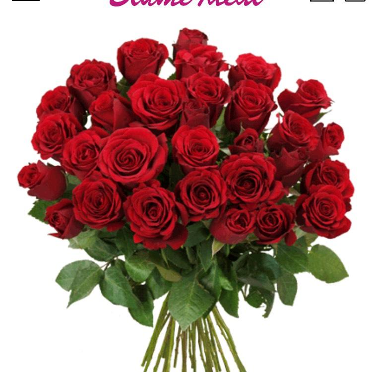 41 Rote Rosen bei [blumeideal.de]