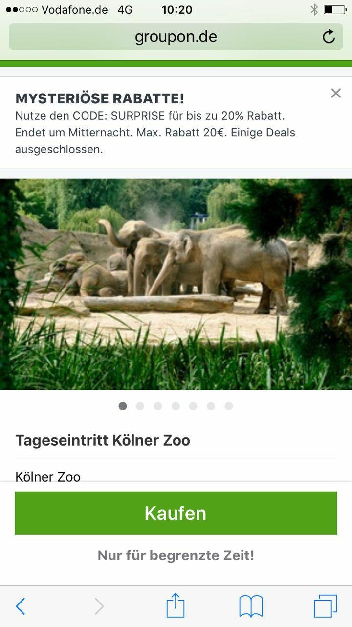 Tageskarte für den Kölner Zoo bei Groupon