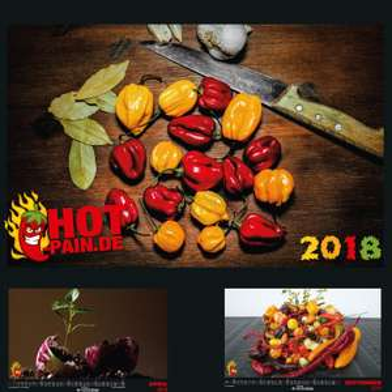 HotPain Chili Kalender in A3 bei Pepperworldhotshop (VSK fallen an)