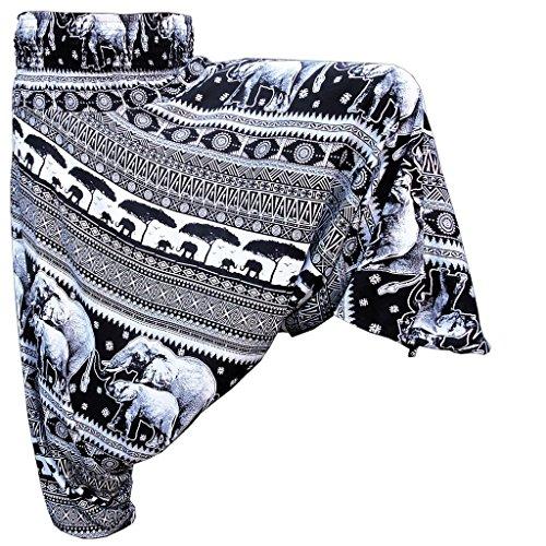 Panasiam Aladin Pants