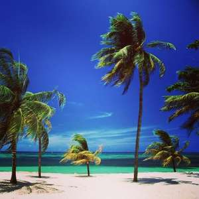 Flüge: Karibik [November - Dezember] - Last-Minute - Direktflüge - Hin- und Rückflug von Düsseldorf oder Köln nach Punta Cana, Varadero oder Bridgetown ab nur 255€ inkl. Gepäck