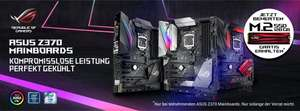 ASUS Z370 Mainboards + ADATA  M2 Solid State Drive »XPG Gammix S10 128 GB« GRATIS