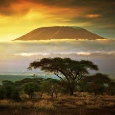 Flüge: Kilimanjaro [November - Dezember & Weihnachten] - Hin- und Rückflug von Frankfurt nach Kilimanjaro ab nur 399€ inkl. Gepäck