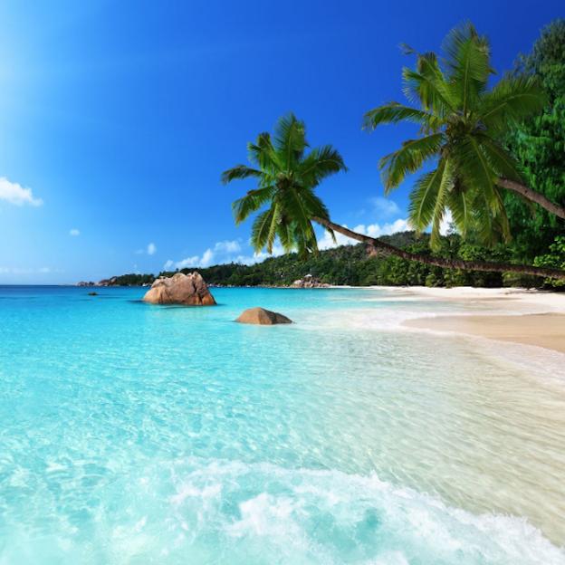 Flüge: Mauritius [November - Dezember] - Last-Minute - Hin- und Rückflug mit Condor von Frankfurt nach Mauritius ab nur 335€ inkl. Gepäck / Mit Lufthansa ab 375€