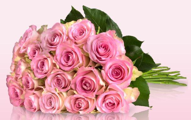 Miflora Strauß mit 20 Rosen