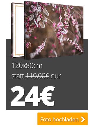 [meinXXL] XXL-Fotoleinwände z.B. 120x80cm je 24€ als Black Friday Deal + 6,90 € Versand