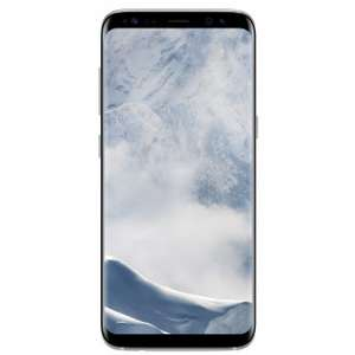 Samsung Galaxy S8 silber/grau [Expert Bening]