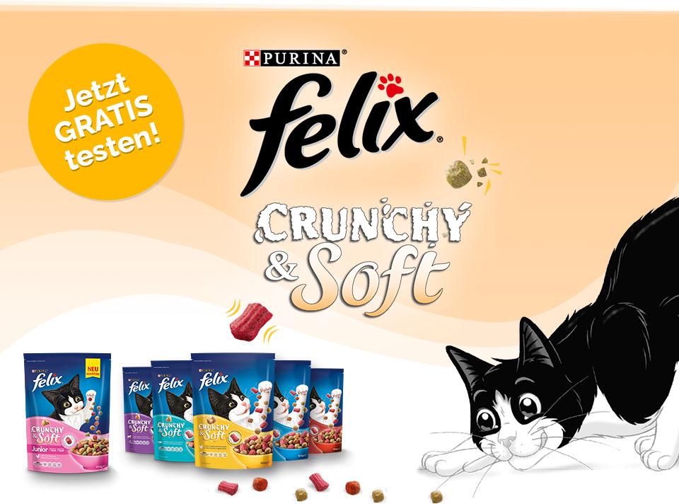 [Rewe] Gratis Testen + 1,90€ Gewinn mit scondoo: 3x Purina Felix Crunchy & Soft Katzenfutter