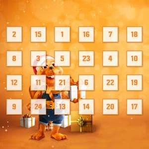 Obi Adventskalender (Inhalt); [Deal kühl, Info:hot]