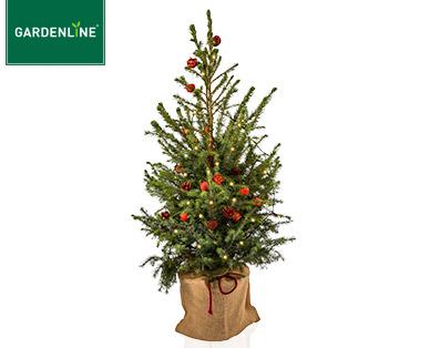 [Aldi Süd] Weihnachtsbaum inkl. Deko  + Licht + Timer