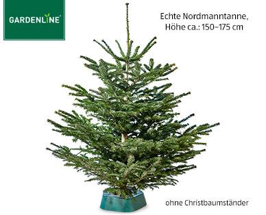 Aldi Süd Weihnachtsbaum Nordmanntanne 150-175cm für 12,99€ ab 14.12.2017