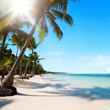 Flüge: Dom. Republik [Dezember] - Direktflüge - Hin- und Rückflug von Köln nach Punta Cana ab nur 235€ inkl Gepäck + Gabelflüge möglich