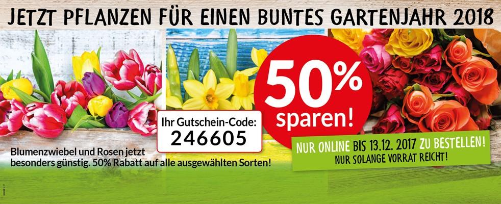 50% Rabatt auf Rosen und Blumenzwiebeln