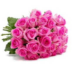 """Blumenstrauß """"PinkDiamonds"""" mit 44 pinken Rosen (50cm Stiellänge) für 24,98€"""