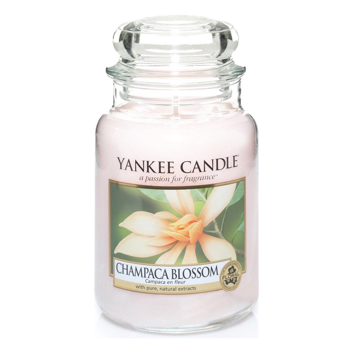 [amazon/Prime] Yankee Candles Groß (623g) in vielen Sorten wieder verfügbar