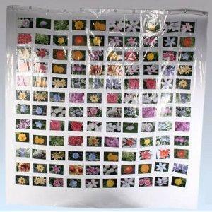 B-Ware Fotovorhang für bis zu 100 Bilder/Postkarten/CD´s für max. 13,90€ @Ebay