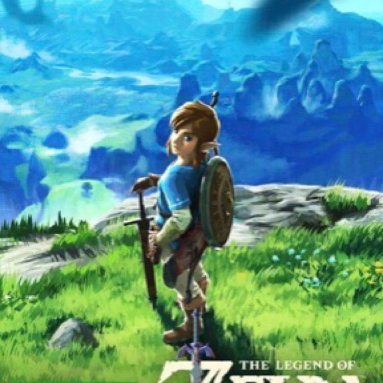 [Real online] The Legend of Zelda BOTW für Nintendo Switch