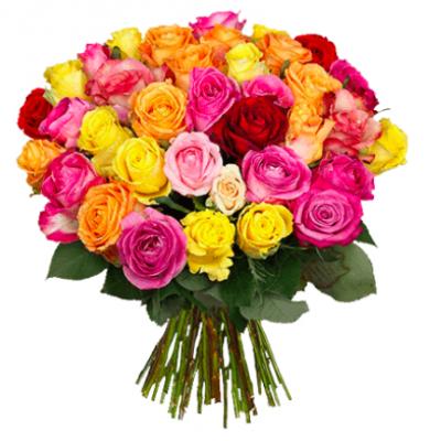 Blume Ideal: Blumenstrauß mit 39 bunten Rosen (50cm Stiellänge) für 22,98€