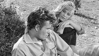 [arte Mediathek] Das Totenschiff +++ Starbesetztes, packendes Abenteuer mit Horst Buchholz, Elke Sommer und Mario Adorf von 1959 in SW