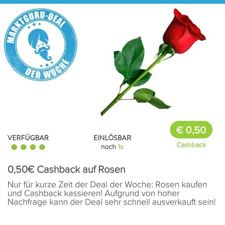 """""""Wolle Rose kaufen?"""" 0,50€ Cashback auf Rosen in der Marktguru-App"""
